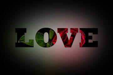 Rose in love van Patrick Herzberg