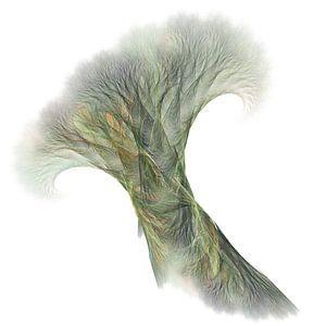 Bomen of Wortels? van