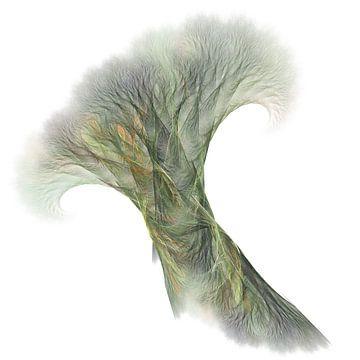 Bomen of Wortels? von Jasper de Brouwer