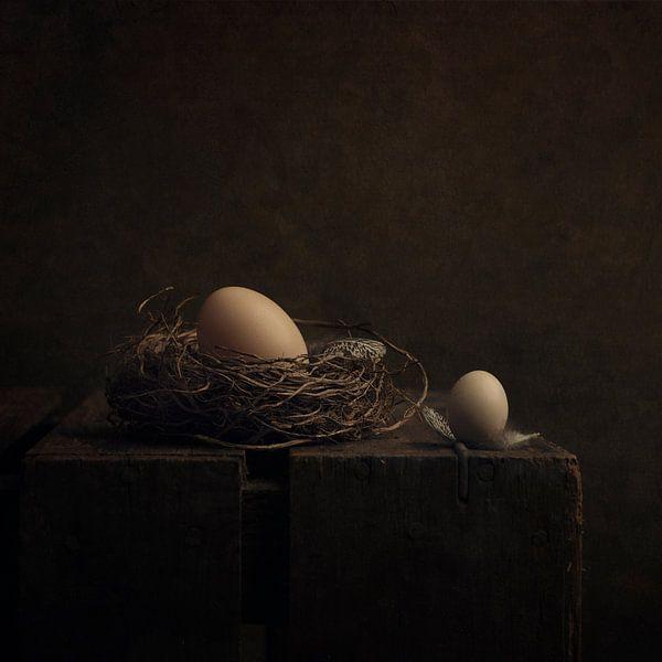 """Stilleven """"Twee eitjes"""" van Carolien van Schie"""
