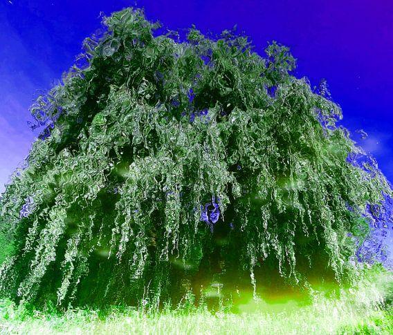 Tree Magic 94 van MoArt (Maurice Heuts)