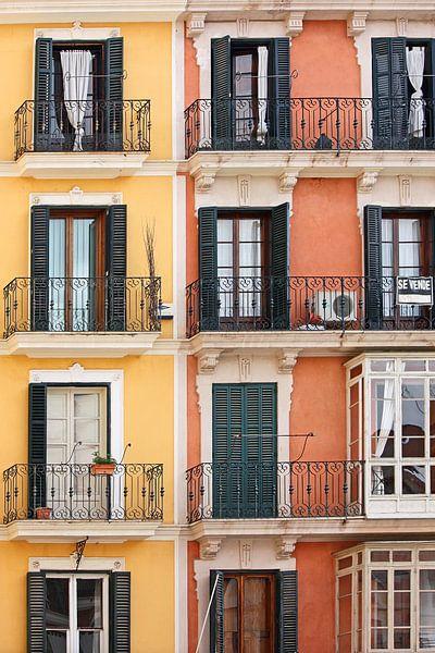 [mallorquin] ... windows to Palma sur Meleah Fotografie