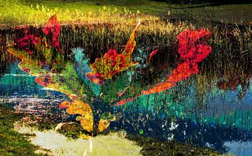 kleurrijk landschap van CreaBrig Fotografie