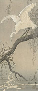 Witte reiger op boomtak van Ohara Koson