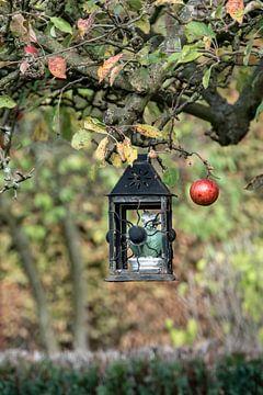 Herbstapfel van Nicole Bäcker