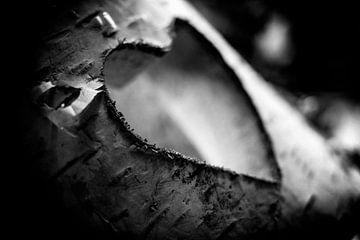 Gesneden hart in beukenhout in zwarte en witte kleuren van pixxelmixx