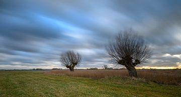 Stormachtige lucht boven een weiland in de vreugderijkerwaard. van Michel Knikker