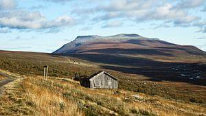 Hoog op een berg in Noorwegen. van