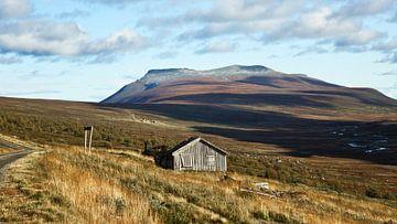 Hoch auf einem Berg in Norwegen. von Sran Vld Fotografie