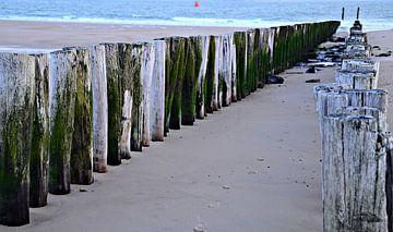 Paalhoofden bij strand Vlissingen van Jessica Berendsen