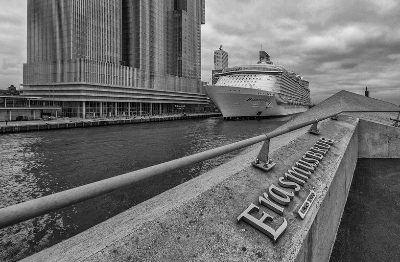 Harmony of the Seas in Rotterdam van Eus Driessen