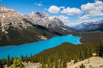 Peyto Lake, Canada van Eveline Dekkers
