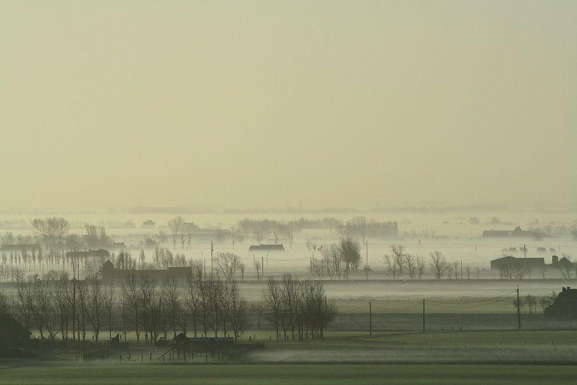 Koeienmist over de poldervlakte  van Johan Töpke