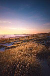 Paysage de dunes près de Hvide Sande