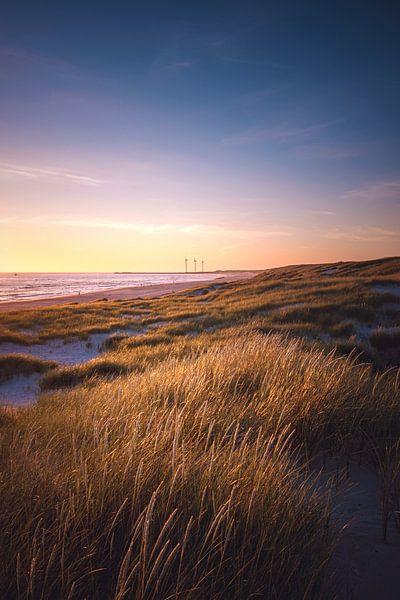 Paysage de dunes près de Hvide Sande sur Florian Kunde