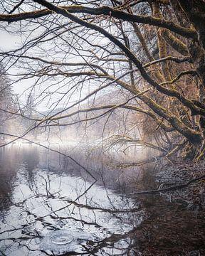 Mystic lake von Joris Machholz