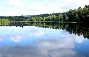 Waldsee von Heike Hultsch