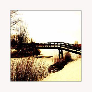Bridge  van Pim Feijen