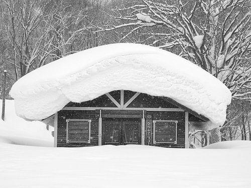 Dik pak sneeuw in Japan