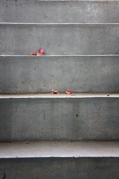 Escalier en béton avec des feuilles sur Jan Brons