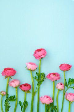 Roze ranonkels van Natascha Teubl
