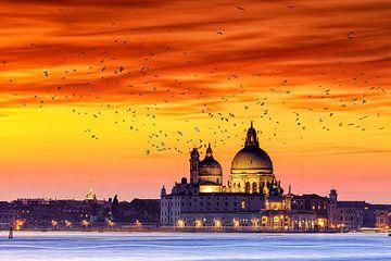 Basilica di Santa Maria von Tilo Grellmann | Photography