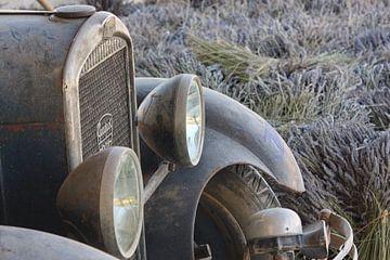 Oude Peugeot tussen de Lavendel, Provence van Jan Piet Hartman