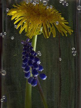 bruisend water bloemen van Christine Nöhmeier