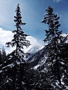 The magic of snow (5) van Christoph Van Daele