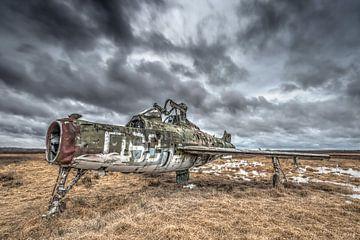 Verlassene Flugzeuge von Gerben van Buiten