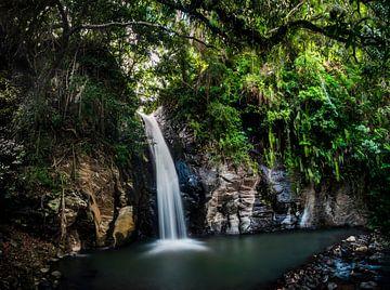 Wasserfall im Dschungel von Flores von Corrine Ponsen