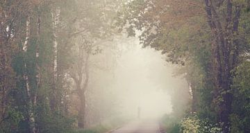 Figure solitaire dans le brouillard