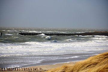 Storm aan zee van Wendy Hilberath
