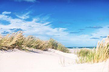 Deense kust bij Skagen van Florian Kunde