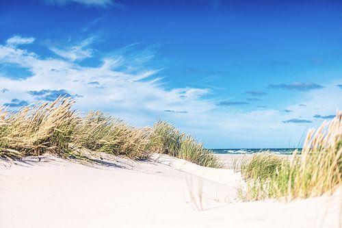 Dänische Küste bei Skagen