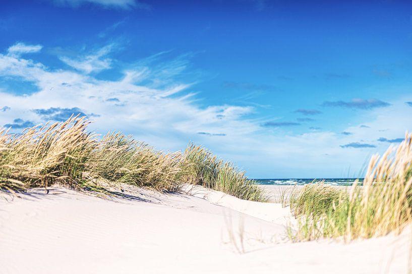 Dänische Küste bei Skagen von Florian Kunde