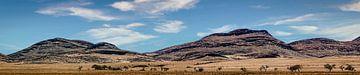 Panorama des Damaralandes in Namibia von Rietje Bulthuis