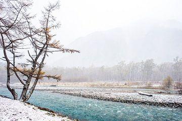 Japanische Winterlandschaft von Manja Herrebrugh - Outdoor by Manja