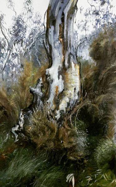 Australische Landschap wit eucalyptus van KB Prints