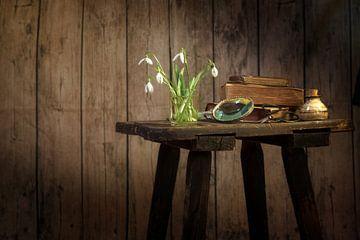 Vase mit Schneeglöckchen, Buch und anderen alten Gegenständen auf einem alten Hocker vor einer dunkl von Maren Winter