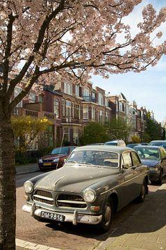 Volvo in de Lente van Charlotte Meindersma