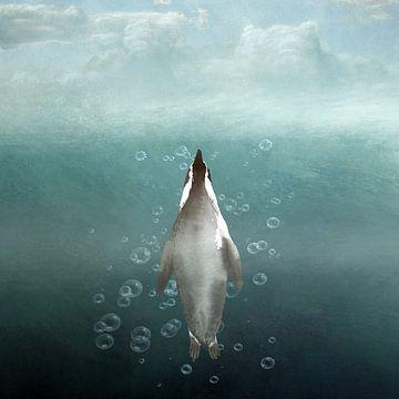 Pinguïn Aqarius von Marja van den Hurk