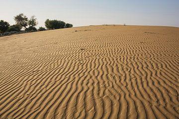 Thar woestijn, Rajasthan India van Tjeerd Kruse