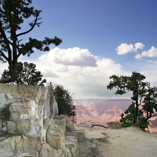 Grand Canyon, USA van Esther Hereijgers