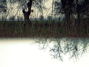 Landelijke omgeving van Anita Snik-Broeken