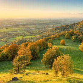Kasteel Hohenzollern in de herfst van Michael Valjak
