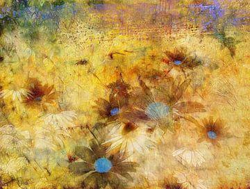 Margeriten und Sonnenhut von Claudia Gründler