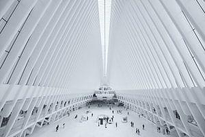 Het Oculus World Trade Center Transportation Hub station bij Ground Zero in Manhattan, New York van Bas Meelker