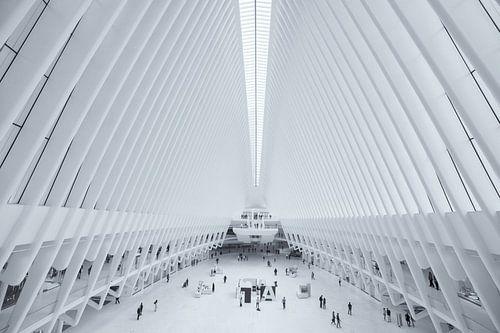 Het Oculus World Trade Center Transportation Hub station bij Ground Zero in Manhattan, New York