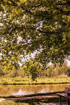 Lage Bergse Bos - Landschap nr. 3 van Deborah de Meijer
